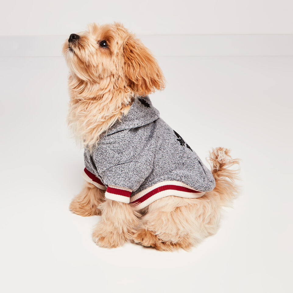 Roots-undefined-Canada Pooch Hoody Size 10-undefined-E
