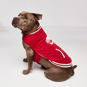 Roots-Women Roots X Canada Pooch®-Canada Pooch Bomber Vest Size 18-Lodge Red-A