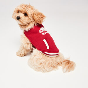 Roots-Women Roots X Canada Pooch®-Canada Pooch Bomber Vest Size 10-Lodge Red-A
