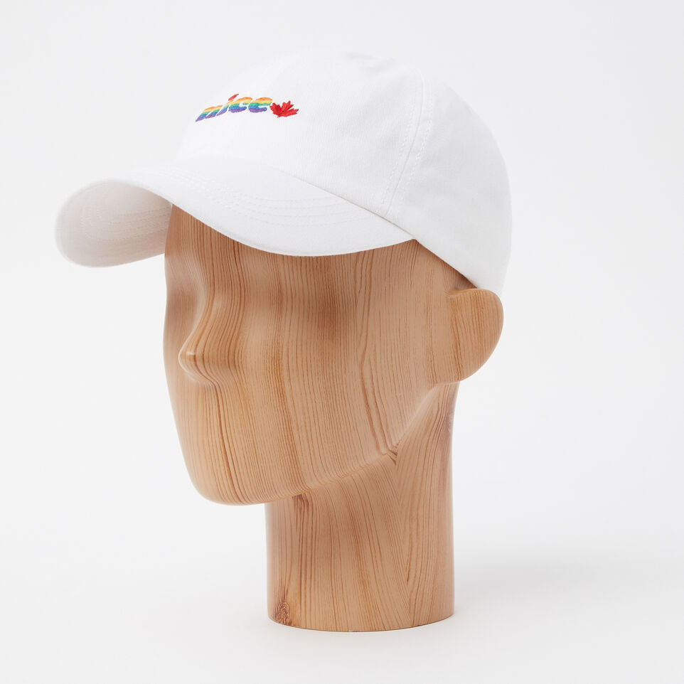 Roots-undefined-Nice Pride Baseball Cap-undefined-B
