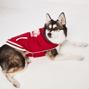 Roots-Women Roots X Canada Pooch®-Canada Pooch Bomber Vest Size 16-Lodge Red-A