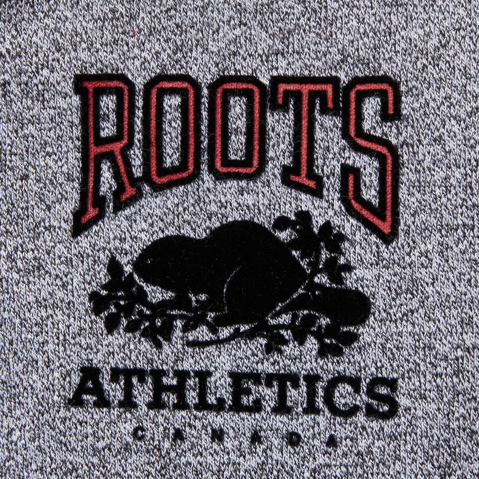 Roots-undefined-Boys Roots Cabin Full Zip Hoody-undefined-E