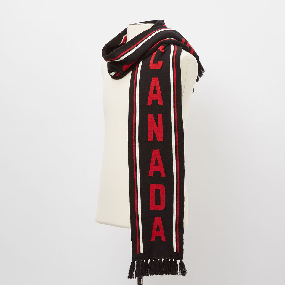 Roots-undefined-Pro Block Fan Scarf-undefined-B