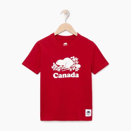 Roots-Kids Our Favourite New Arrivals-Boys Canada T-shirt-Sage Red-A