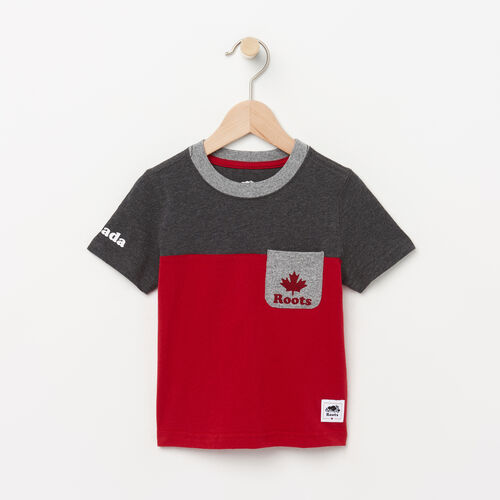 Roots-Kids T-shirts-Toddler Canada Colourblock T-Shirt-Sage Red-A