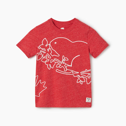 Roots-Kids Canada Collection-Boys Super Cooper T-shirt-Sage Red Mix-A