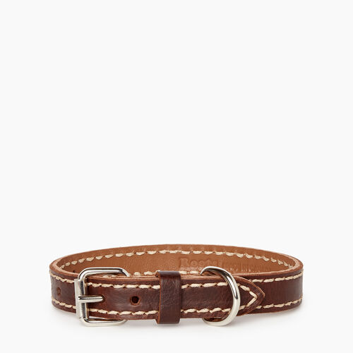 Roots-Leather Leather Accessories-Extra Small Leather Dog Collar-Chocolate-A