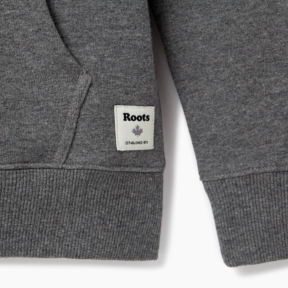 Roots-Kids Our Favourite New Arrivals-Boys Colour Block Cooper Hoody-Medium Grey Mix-C