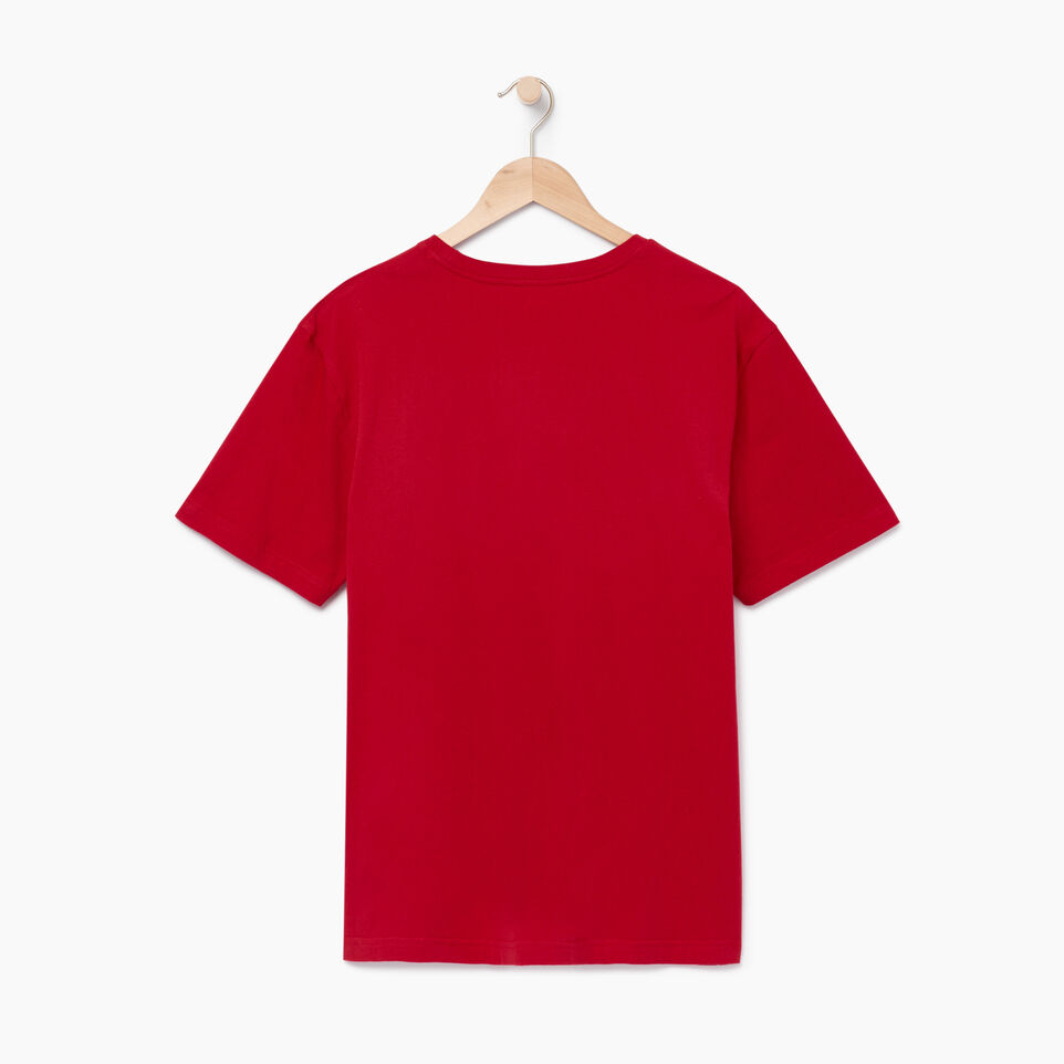 Roots-Men Our Favourite New Arrivals-Mens Watercolour Flag T-shirt-Sage Red-B