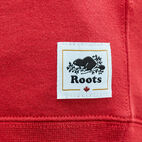 Roots-undefined-Boys Blazon Hoody-undefined-D