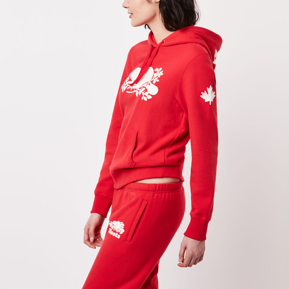 Roots-undefined-Roots Cooper Kanga Hoody-undefined-C