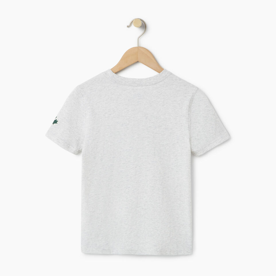Roots-Kids Our Favourite New Arrivals-Boys Great Outdoors T-shirt-White Mix-B