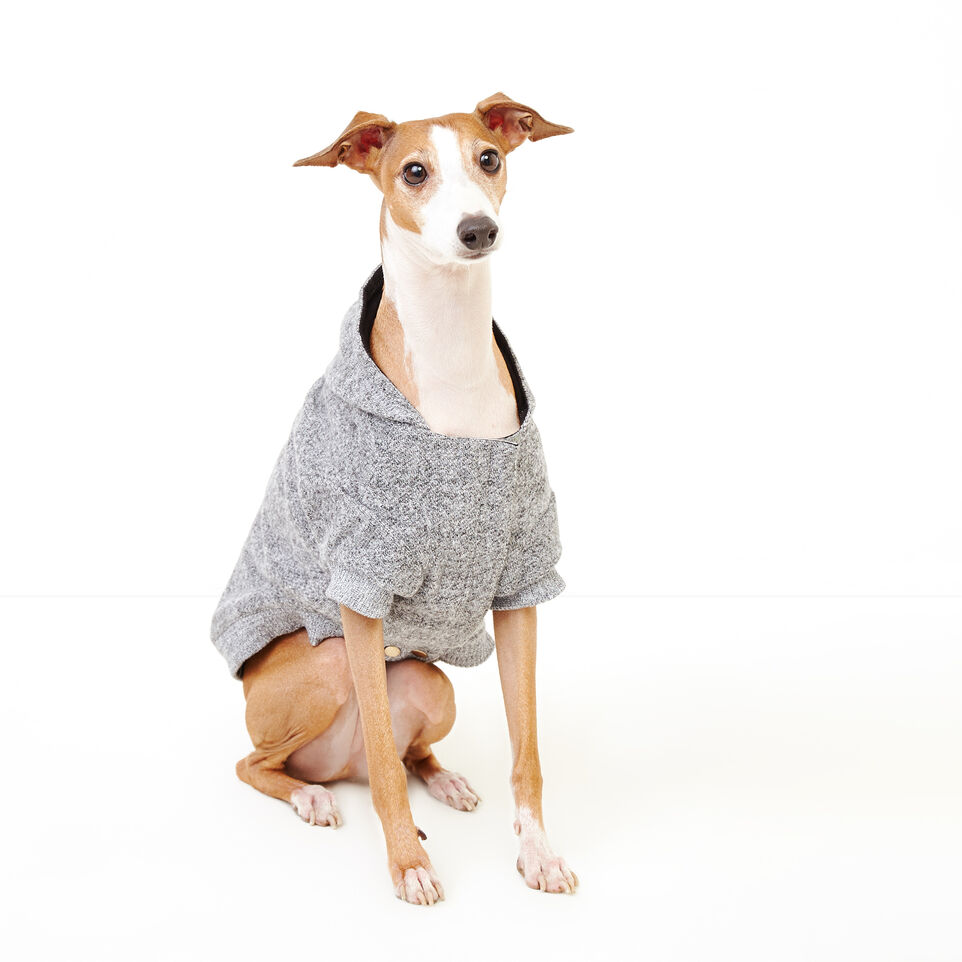 Pooch Salt And Pepper Hoody Size 14 Pooch Salt And Pepper Hoody Size 14 by Roots