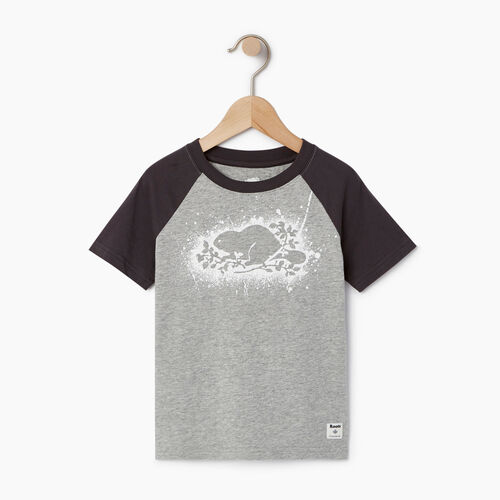 Roots-Sale Kids-Toddler Splatter Raglan T-shirt-Grey Mix-A