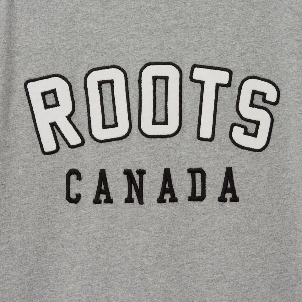 Roots-undefined-Mens Letterman Raglan T-shirt-undefined-D
