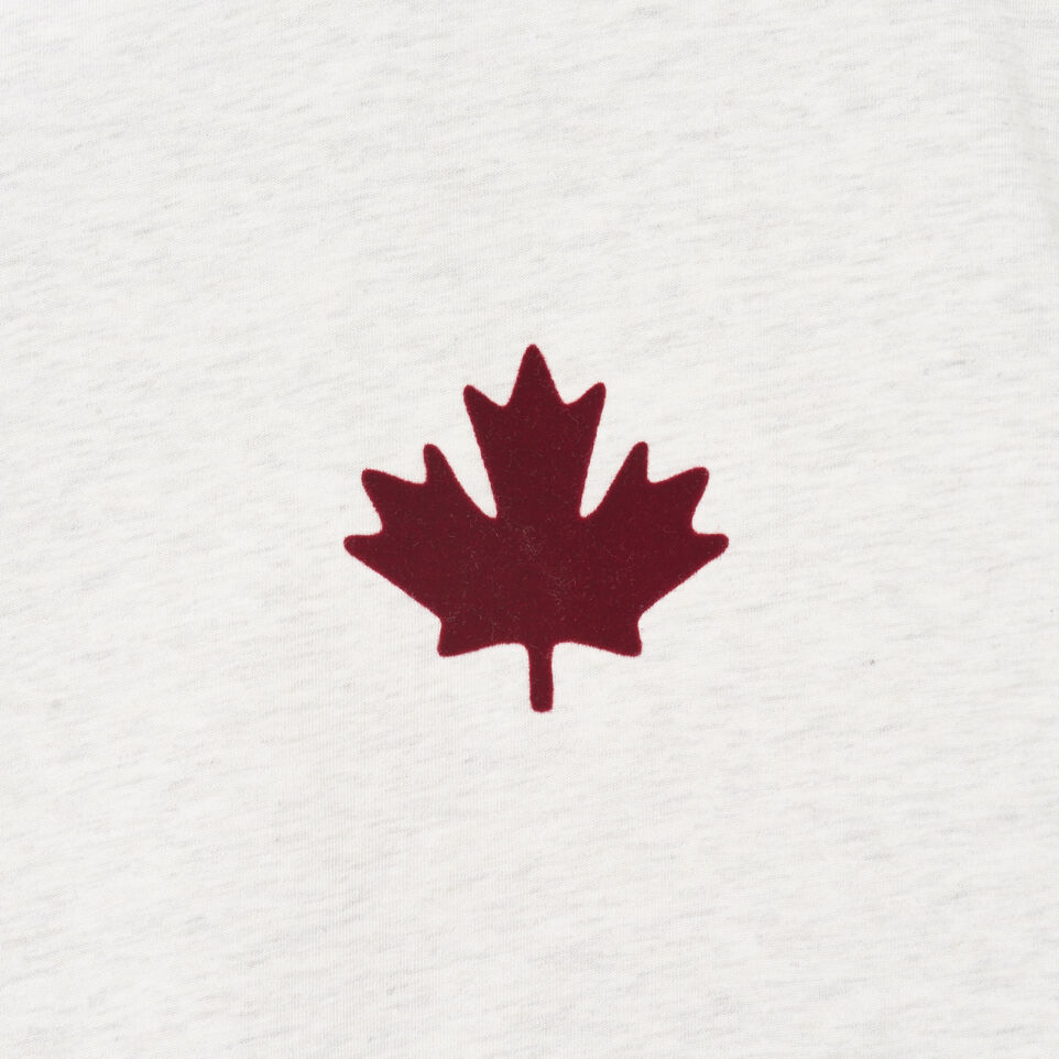 Roots-Men Our Favourite New Arrivals-Mens Canada Cabin Ringer T-shirt-Wind Chime Mix-D