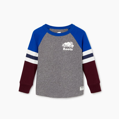 Roots-Kids T-shirts-Toddler Cooper Beaver Raglan T-shirt-Medium Grey Mix-A