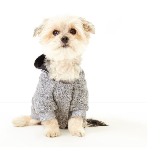 Roots-New For November Roots X Canada Pooch®-Pooch Salt and Pepper Hoody Size 12-Salt & Pepper-A