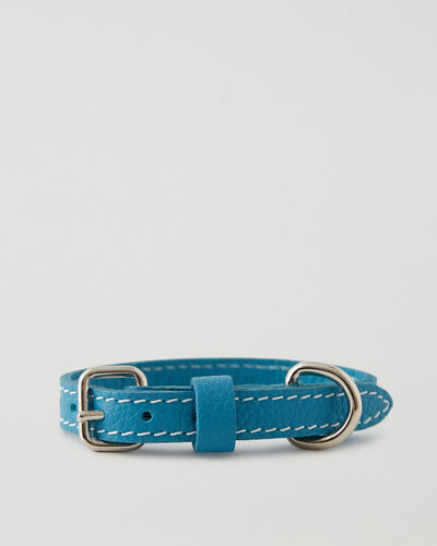 Roots-Leather Dog Accessories-Extra Small Leather Dog Collar-Blue Lagoon-A