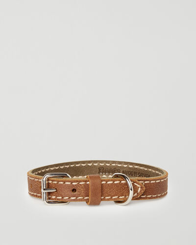 Roots-New For This Month Dog Accessories-Extra Small Leather Dog Collar-Natural-A