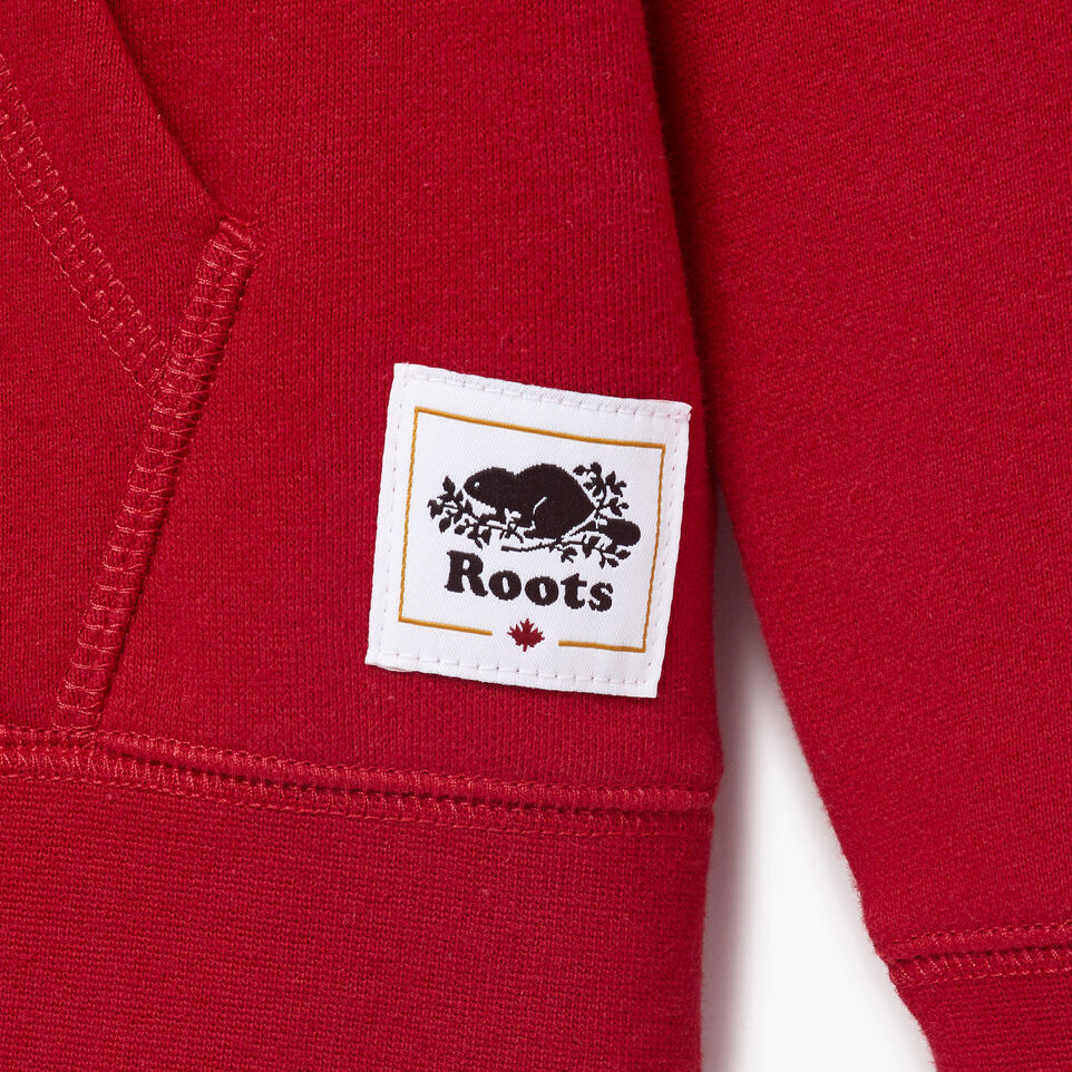 Roots-Kids Our Favourite New Arrivals-Boys Canada Kanga Hoody-Sage Red-C
