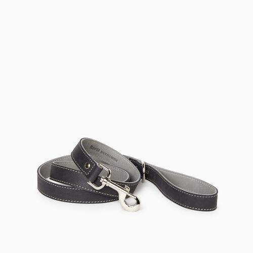 Roots-New For January Dog Accessories-Leather Dog Leash-Jet Black-A