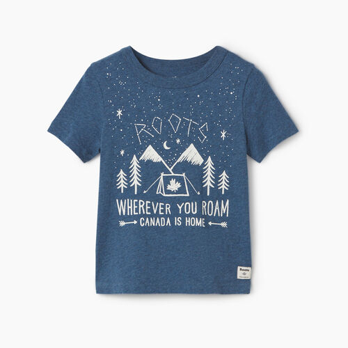 Roots-Kids Toddler Boys-Toddler Roots Outdoors T-shirt-Blue Mix-A