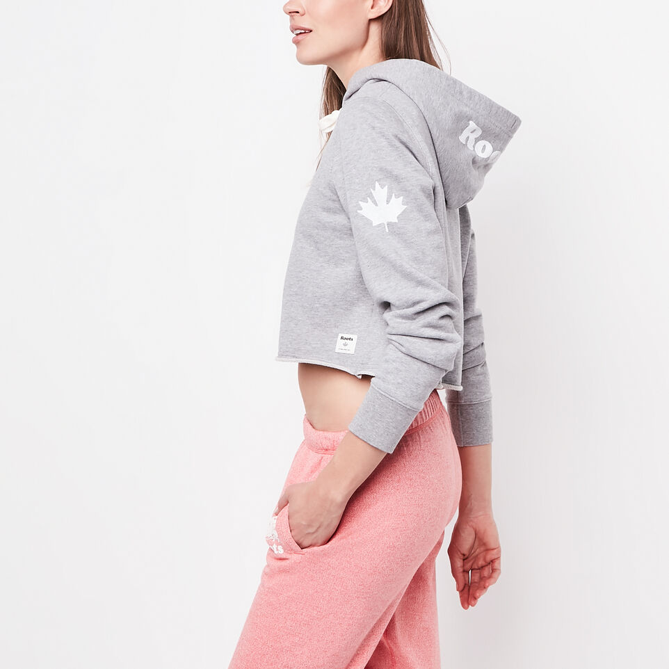 Roots-undefined-Busted Cooper Cropped Hoody-undefined-B