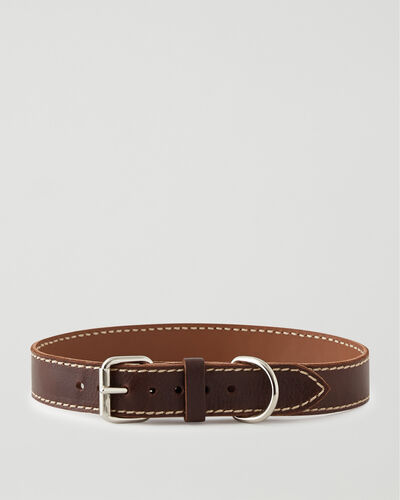 Roots-New For This Month Dog Accessories-Extra Large Leather Dog Collar-Chocolate-A