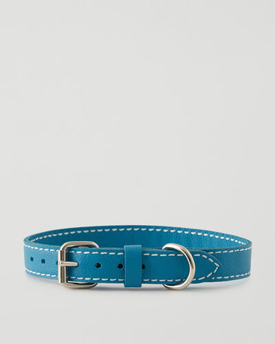 Roots-Leather Dog Accessories-Large Leather Dog Collar-Blue Lagoon-A