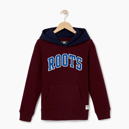 Roots-Kids Our Favourite New Arrivals-Boys 2.0 Colourblock Raglan Hoody-Cabernet-A