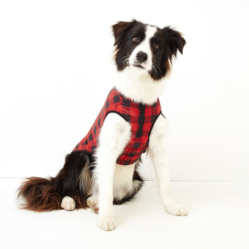 Roots-New For November Roots X Canada Pooch®-Pooch Park Plaid Puffer Size 20-Red-A