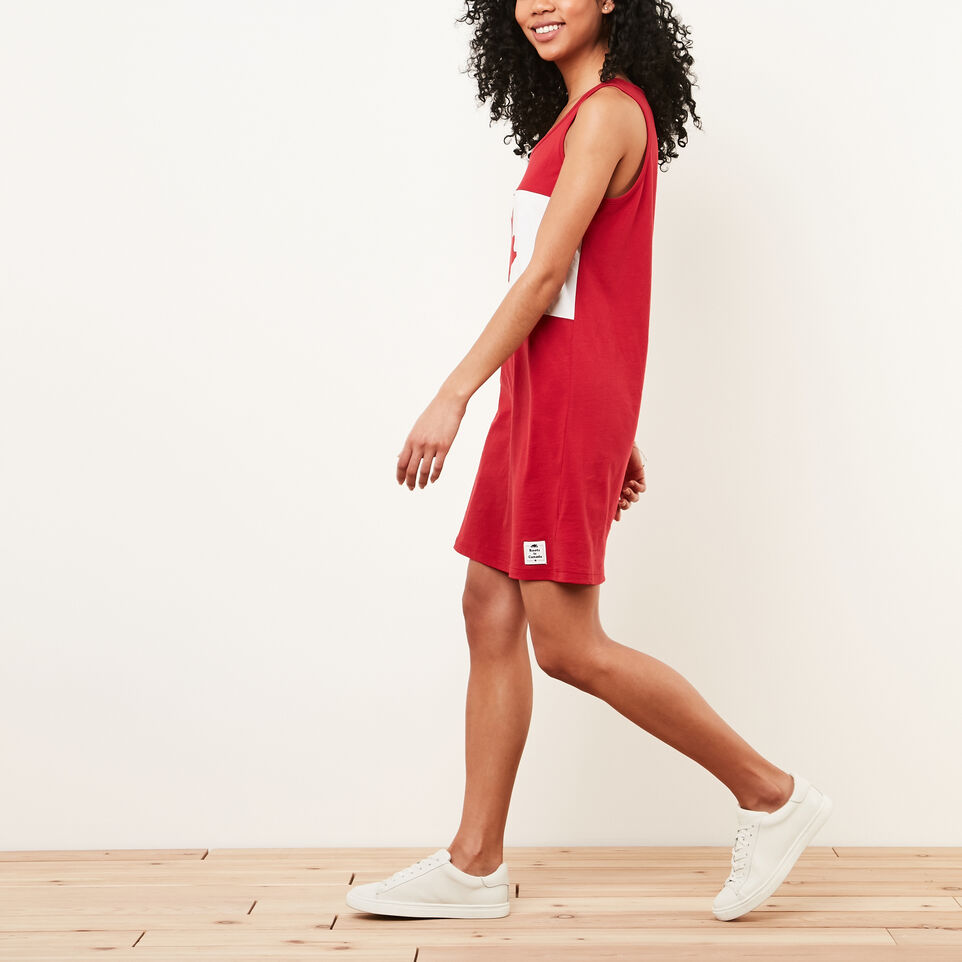 Roots-undefined-Blazon Jersey Dress-undefined-B