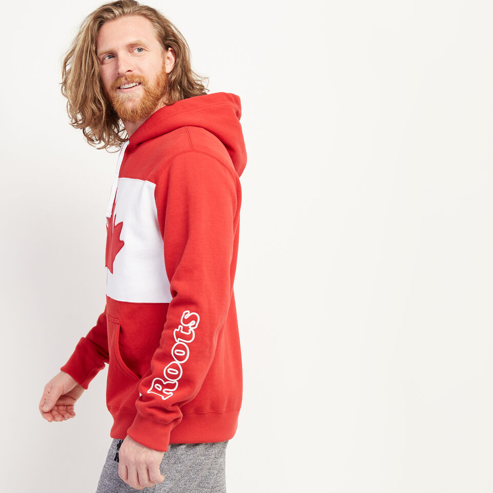 Roots-New For July Men-Blazon Hoody-Sage Red-C
