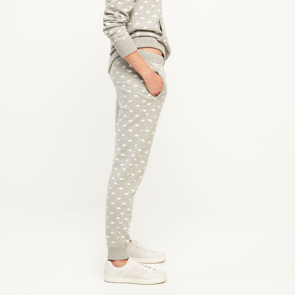Roots-undefined-Springhill Slim Sweatpant-undefined-C