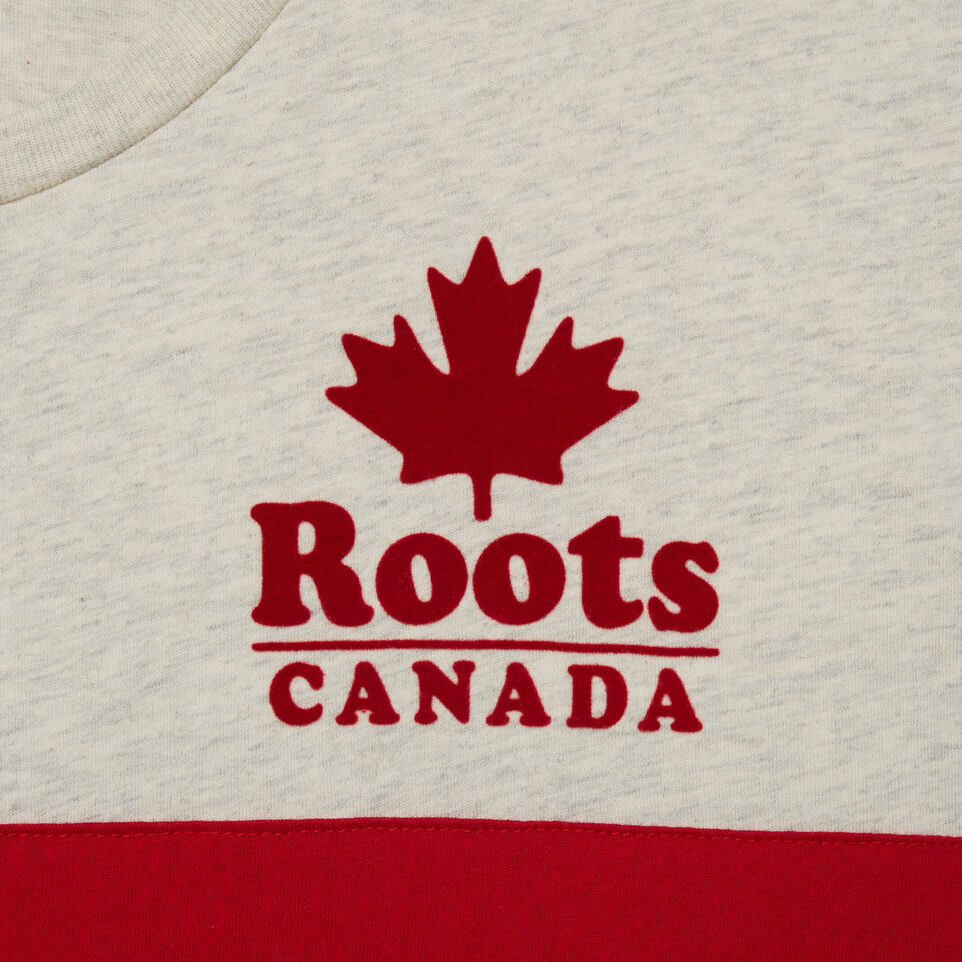 Roots-undefined-Mens Canada Cabin T-shirt-undefined-D