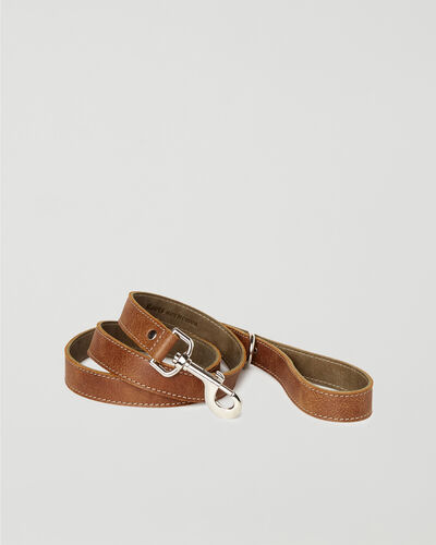 Roots-New For This Month Dog Accessories-Leather Dog Leash-Natural-A