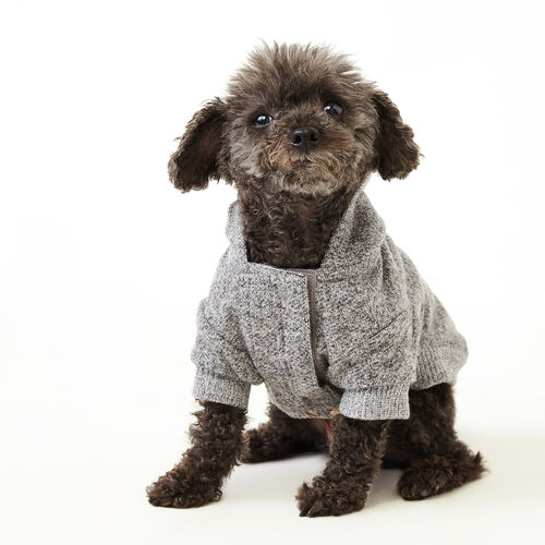 Roots-New For November Roots X Canada Pooch®-Pooch Salt and Pepper Hoody Size 10-Salt & Pepper-A