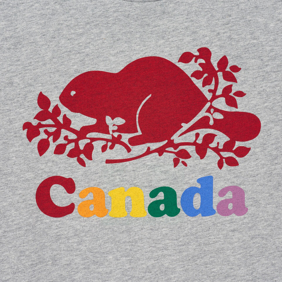 Roots-New For June Canada Collection By Roots™-Womens Cooper Canada T-shirt-Grey Mix-D