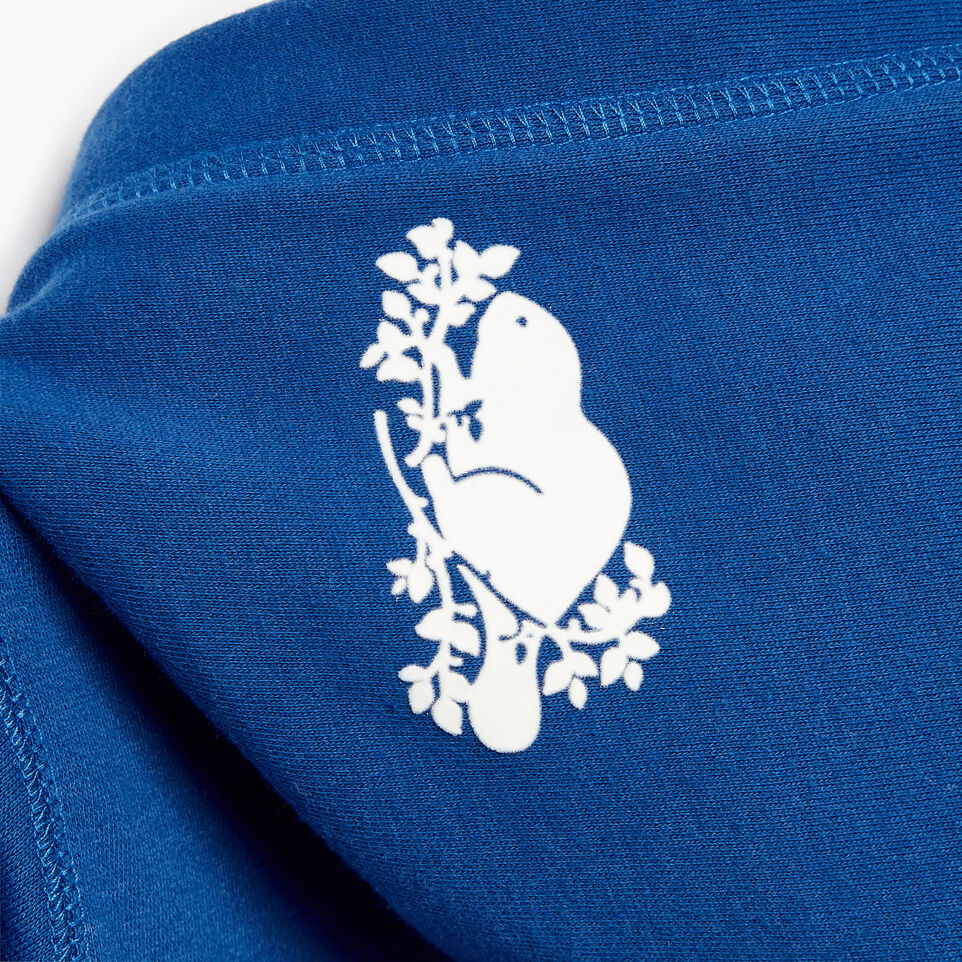 Roots-Kids Our Favourite New Arrivals-Boys Patches Full Zip Hoody-Active Blue-E