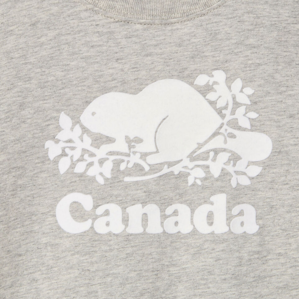 Roots-Kids Canada Collection-Toddler Canada T-shirt-Grey Mix Pepper-D