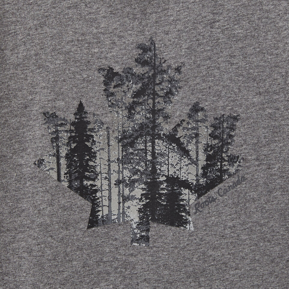 Roots-undefined-Boys Maple Leaf Forest T-shirt-undefined-C