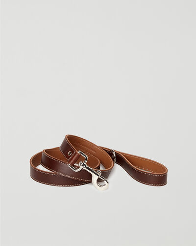 Roots-New For This Month Dog Accessories-Leather Dog Leash-Chocolate-A