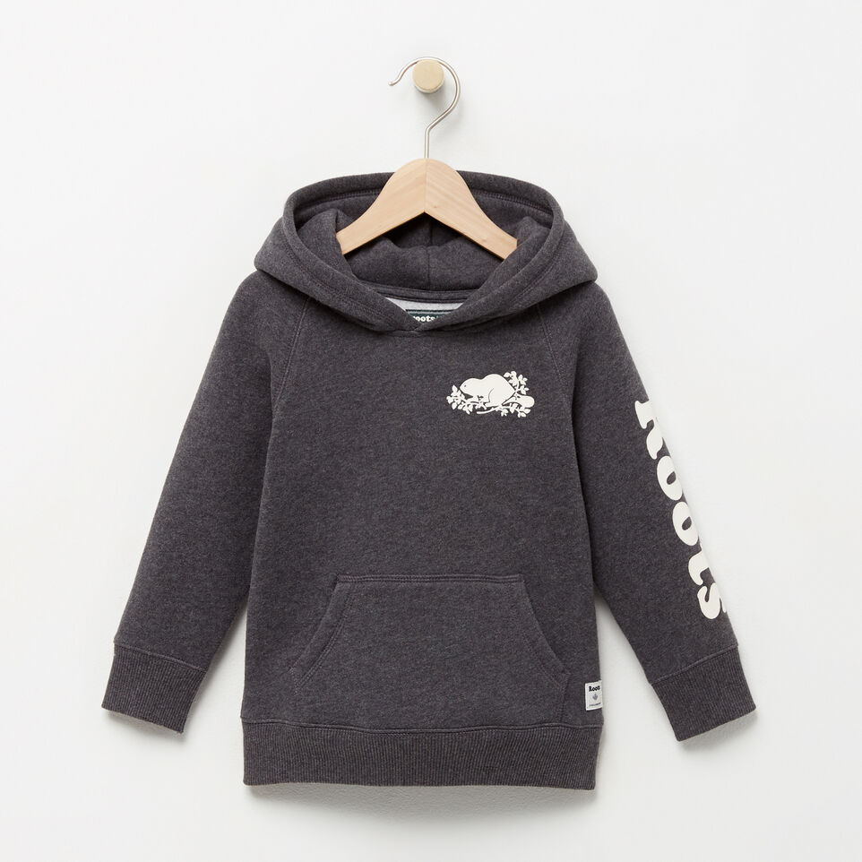 Roots-Toddler Remix Hoody