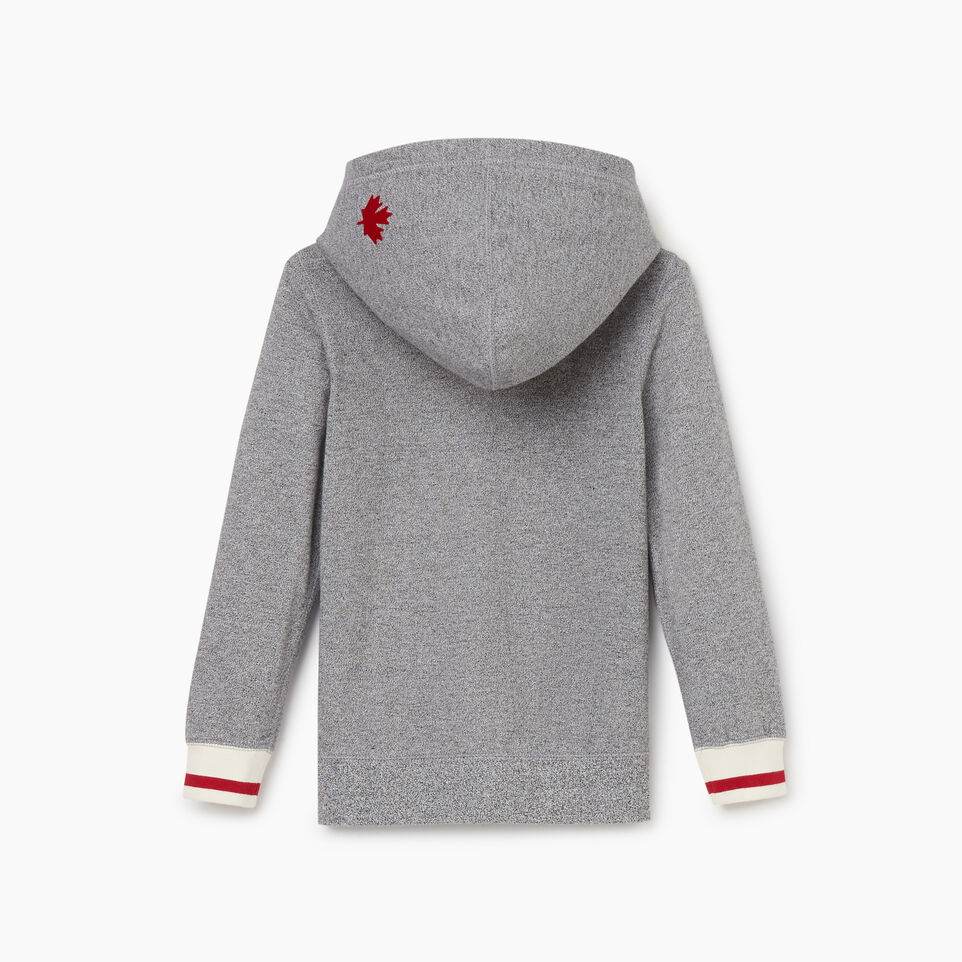 Roots-undefined-Boys Cabin Full Zip Hoody-undefined-C