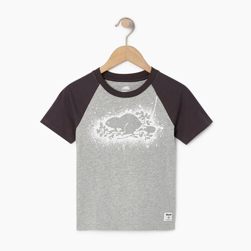 Roots-Clearance Kids-Boys Splatter Raglan T-shirt-Grey Mix-A