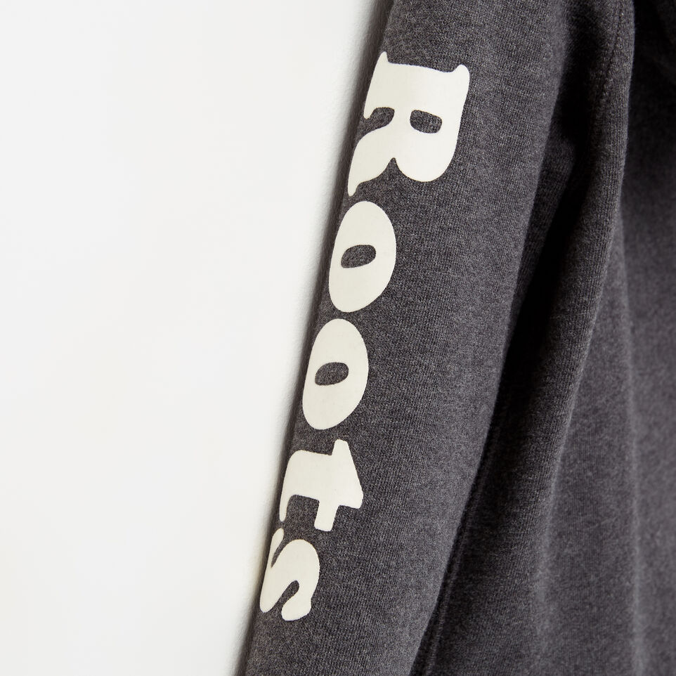 Roots-undefined-Toddler Roots Remix Hoody-undefined-D