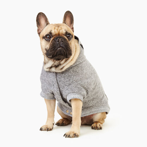 Roots-New For November Roots X Canada Pooch®-Pooch Salt and Pepper Hoody Size 16-Salt & Pepper-A