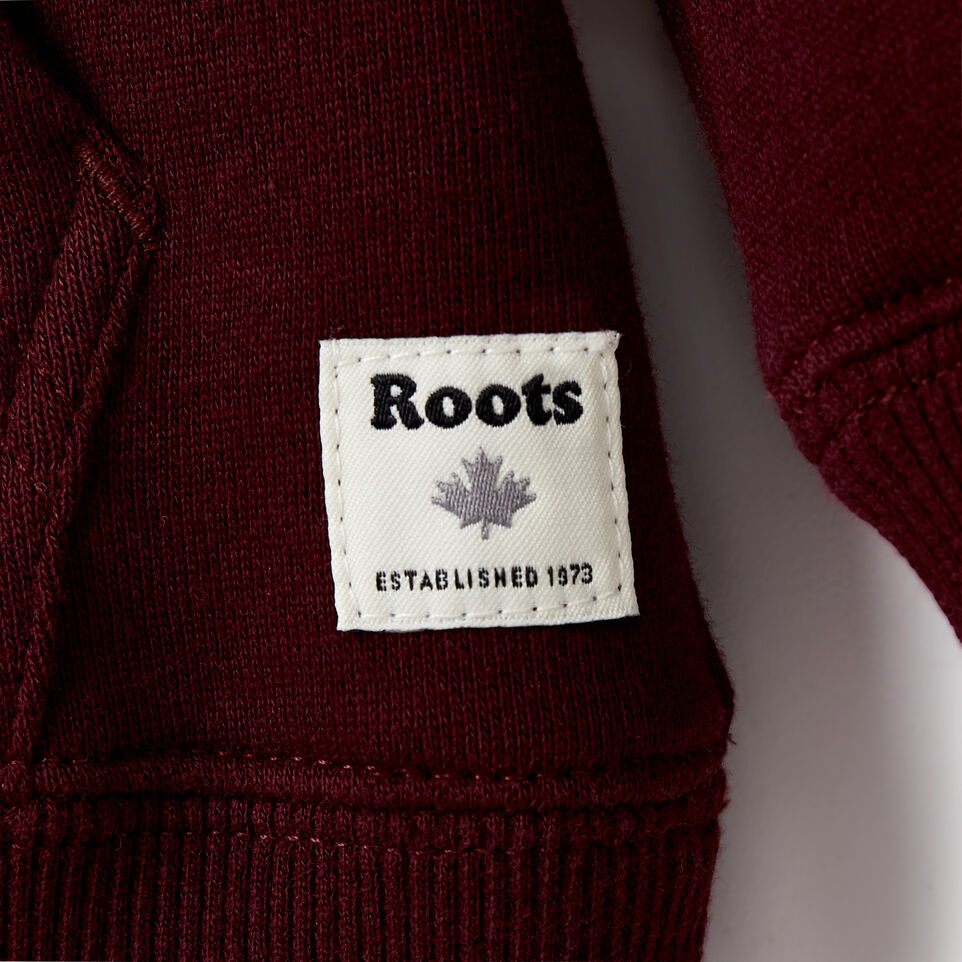 Roots-Kids Our Favourite New Arrivals-Toddler 2.0 Colourblock Raglan Hoody-Cabernet-C