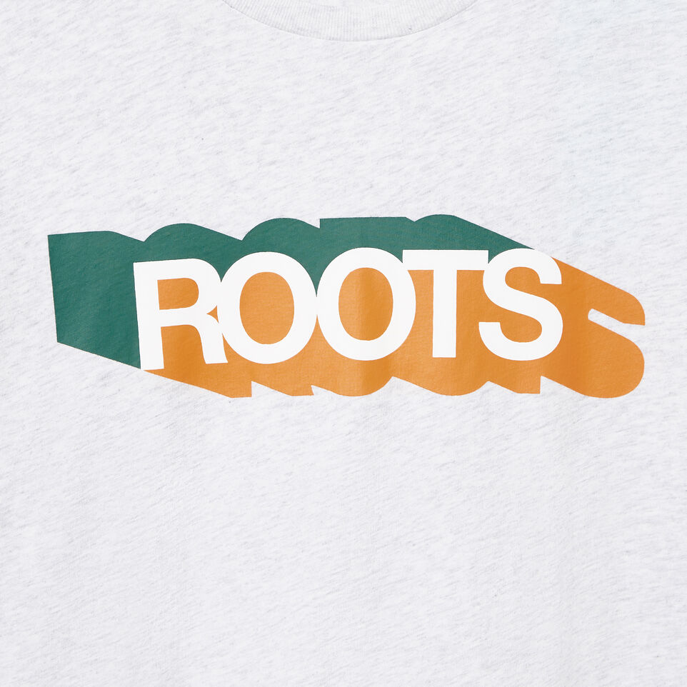 Roots-undefined-Mens Roots Colours T-shirt-undefined-D